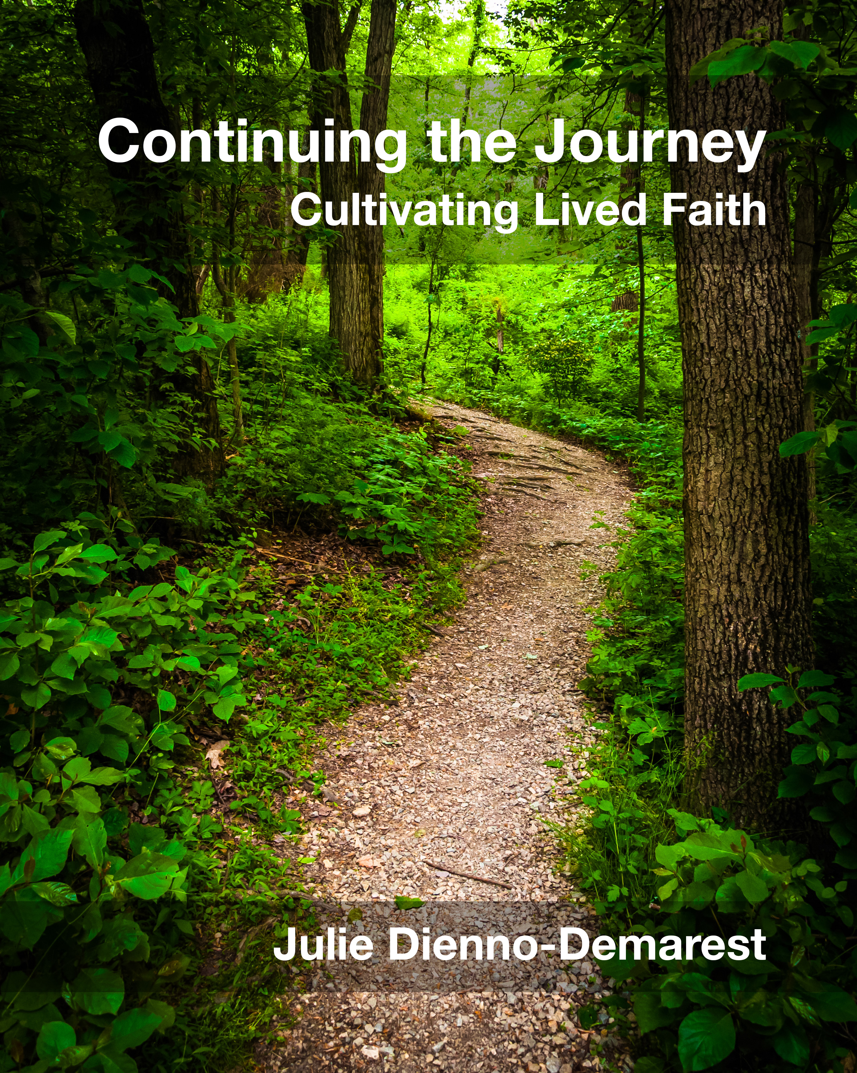 Continuing the Journey Cover